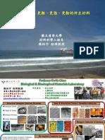 陳柏宇_2014_06_27-仿生科技論壇_更輕、更強、更韌的仿生材料
