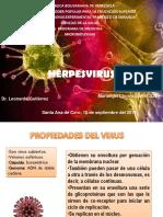 1568114249953_herpesvirus Seminario Mariangel