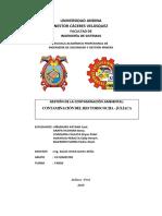Contaminación Ambiental en La Ciudad de Juliaca-1