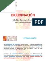 T4. Biolixiviación