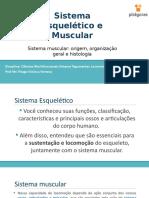 Seção+2.4+-+Sistema+muscular+origem,+organização+geral+e+histologia.pptx