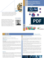 CiberTerrorismo, CiberInteligencia y CiberSeguridad - Riesgos y Amenazas