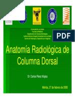 Columna Dorsal