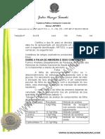 Artigo Folha amoreira tradução juramentada.pdf