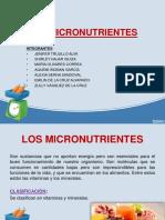 LOS MICRONUTRIENTES