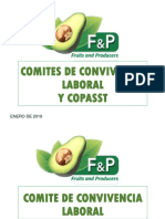 1-Comites de Convivencia Laboral y Copasst