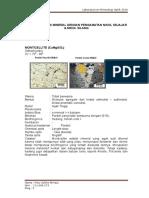 70093382-Deskripsi-Mineral.doc