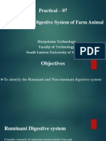 Practical- 3 Identifying the Digestive System of Farm Animal