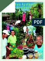 Agricultura Agroflorestal ou Agrofloresta
