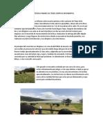 pdf leche de cabra