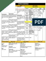 Matriz Consistencia Auditoria 2 Version Final 2017