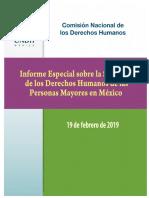 CNDH Informe 2019 Personas Mayores