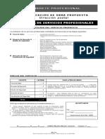 Propuesta Servicios Profesionales