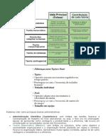 CONHECIMENTOS ESPECIFICOS.docx