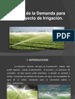 350186405 Demanda Para Un Proyecto de Irrigacion