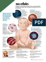 Infographie Carrefour - Au coeur de nos cellules (page 1) - Novembre 2000