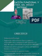 fisiología humana.ppt