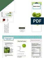 Angelica Rodriguez Apple Brochure