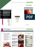 Diana Mendoza Apple Brochure