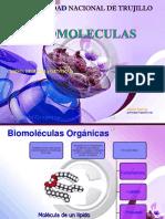 Biomoleculas i