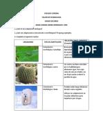 Ecobiologia