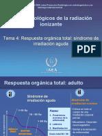 SAR y Exposicion Prenatal y Efectos Tardios