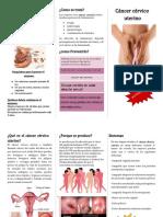 Cáncer cervico uterino triptico -2