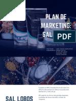 Plan de Marketing_ Sal Lobos Rev Final