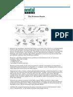 The Protozoa Puzzle- Version Imprimible
