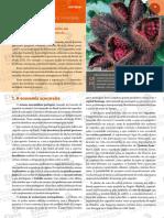 3a Serie Apostila Historia I Vol 2.PDF (1)
