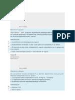 quiz-estrategia-Carlos-docx.docx