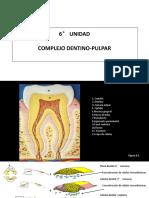 6° UNIDAD Complejo Dentino - pulpar