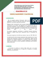 273680660-PRACTICA-Nº-13-GRUPO-SANGUINEO-Y-FACTOR-Rh.docx