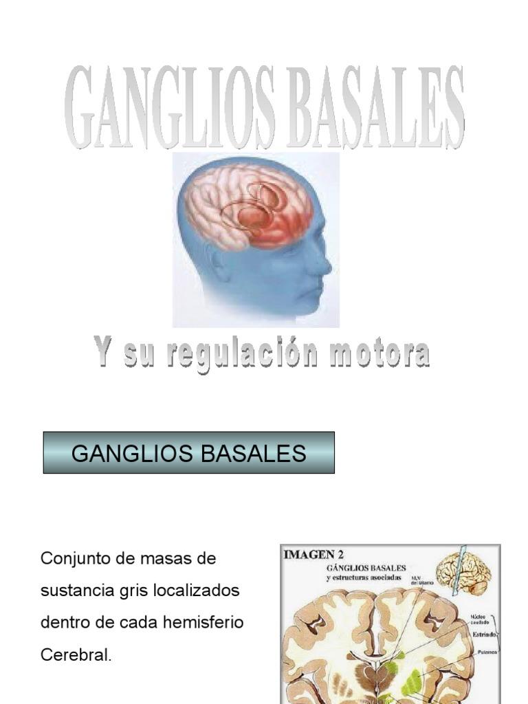 Ganglios Basales y su función motora ROMERO FEDERICO FISIOLOGIA