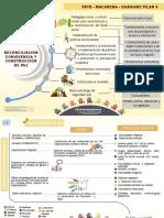 Infografia Patr.finalpdf (1)