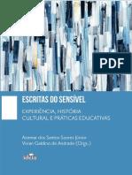 SOARES_JR_Azemar_GALDINO_Vivian_Orgs_Esc.pdf