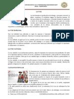 Ficha Sobre La Voz y Su Clasificacion - Wrw-2019