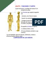 1. CONTENIDO Y ACTIVIDADES DEL SISTEMA ESQUELETICO Y MUSCULAR.docx
