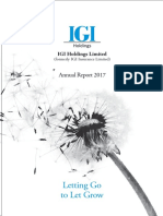 IGI Annual report 2018