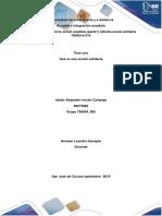 concepto_accion_solidaria_jaider_rincon_700004_485 - copia.docx
