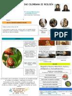 poster scm.pdf