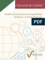 Modelo PNC-Medianas-y-Grandes-Empresas.pdf