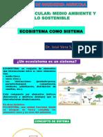 11.-ECOSISTEMA-COMO-SISTEMA.pptx