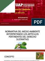 medio-ambiente.pptx