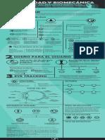 Infografía Biomecánica