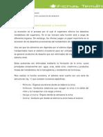 P0001 File Sistema Excretor