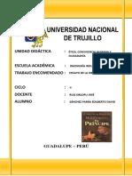 ENSAYO DE LA OBRA.docx