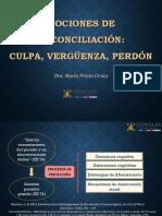 Mociones de Reconciliación- Culpa, Vergüenza y Perdón