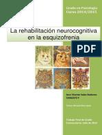 Rehabilitación cognitiva esquizofrenia