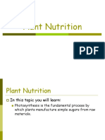 Plant Nutrition.ppt